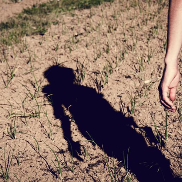Sombra y tierra